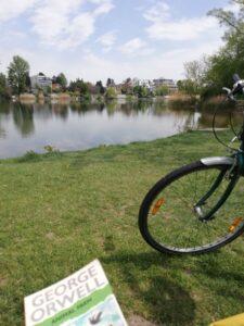 sophia's bycicle